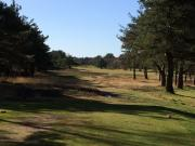 images/Courses/Ferndown/10-ferndown-6th.jpg